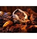 Cacao en polvo 400g