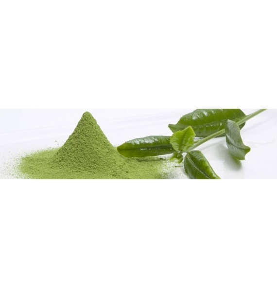 Te  Verde Matcha Japones Orgánico 125g