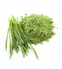 Alfalfa Grass jugo en polvo orgánico 150g