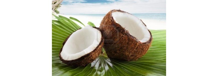 Derivados de Coco Nucífera